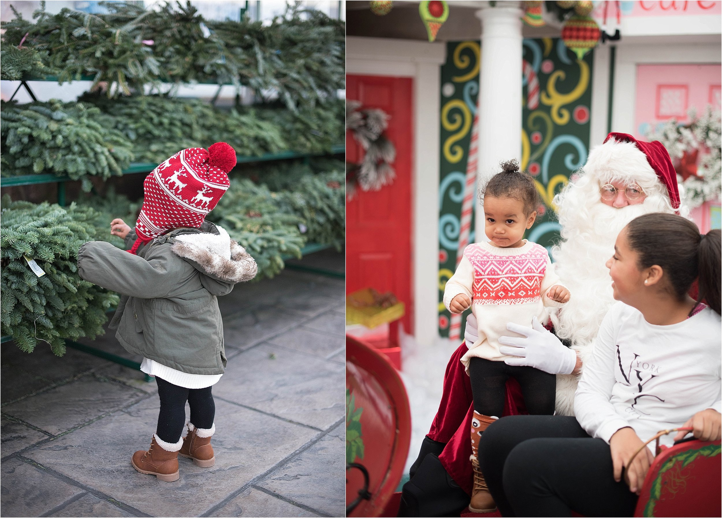 christmas_tradition_greenstreet_gardens_003.jpg