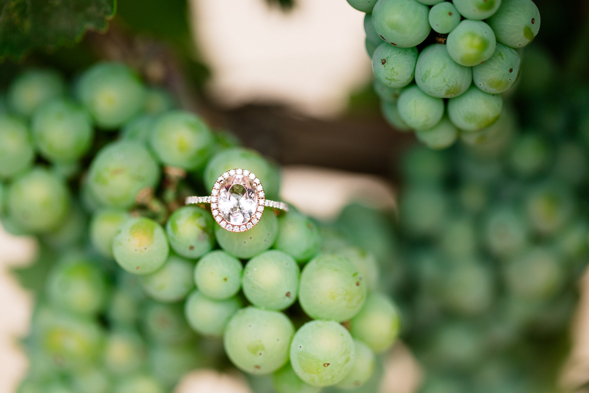 A Winery Engagement Session