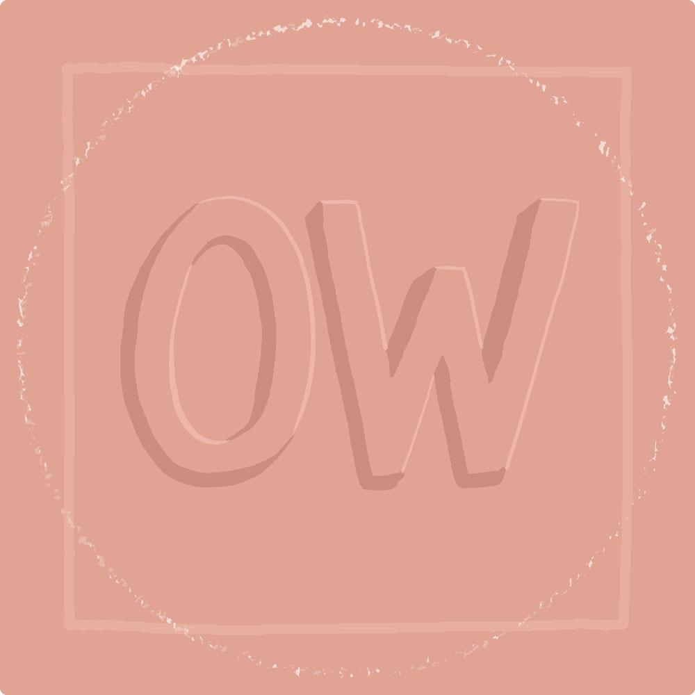 20-OhWonder-Build.jpg