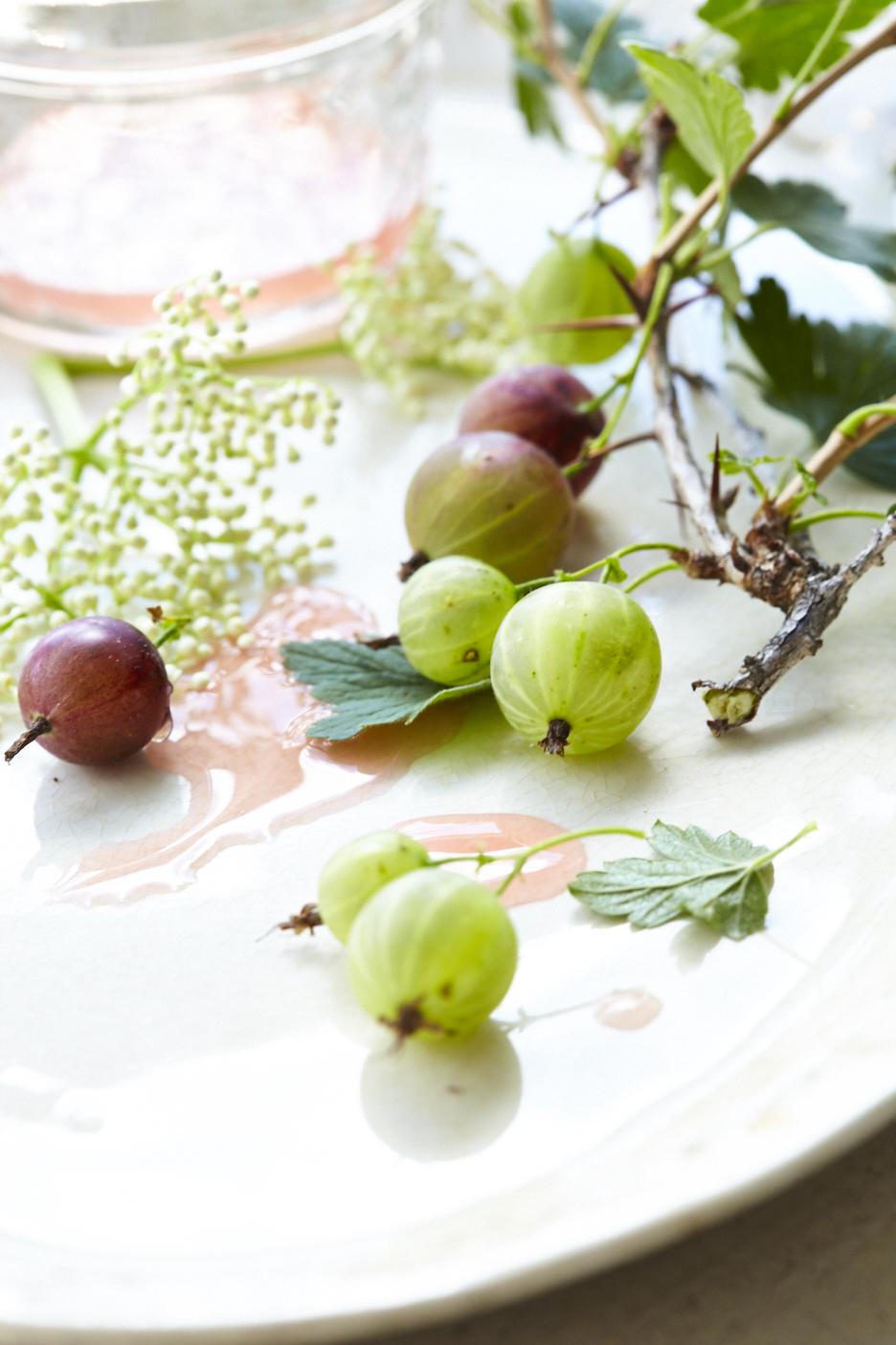 Gooseberry and Elderflower Syrup