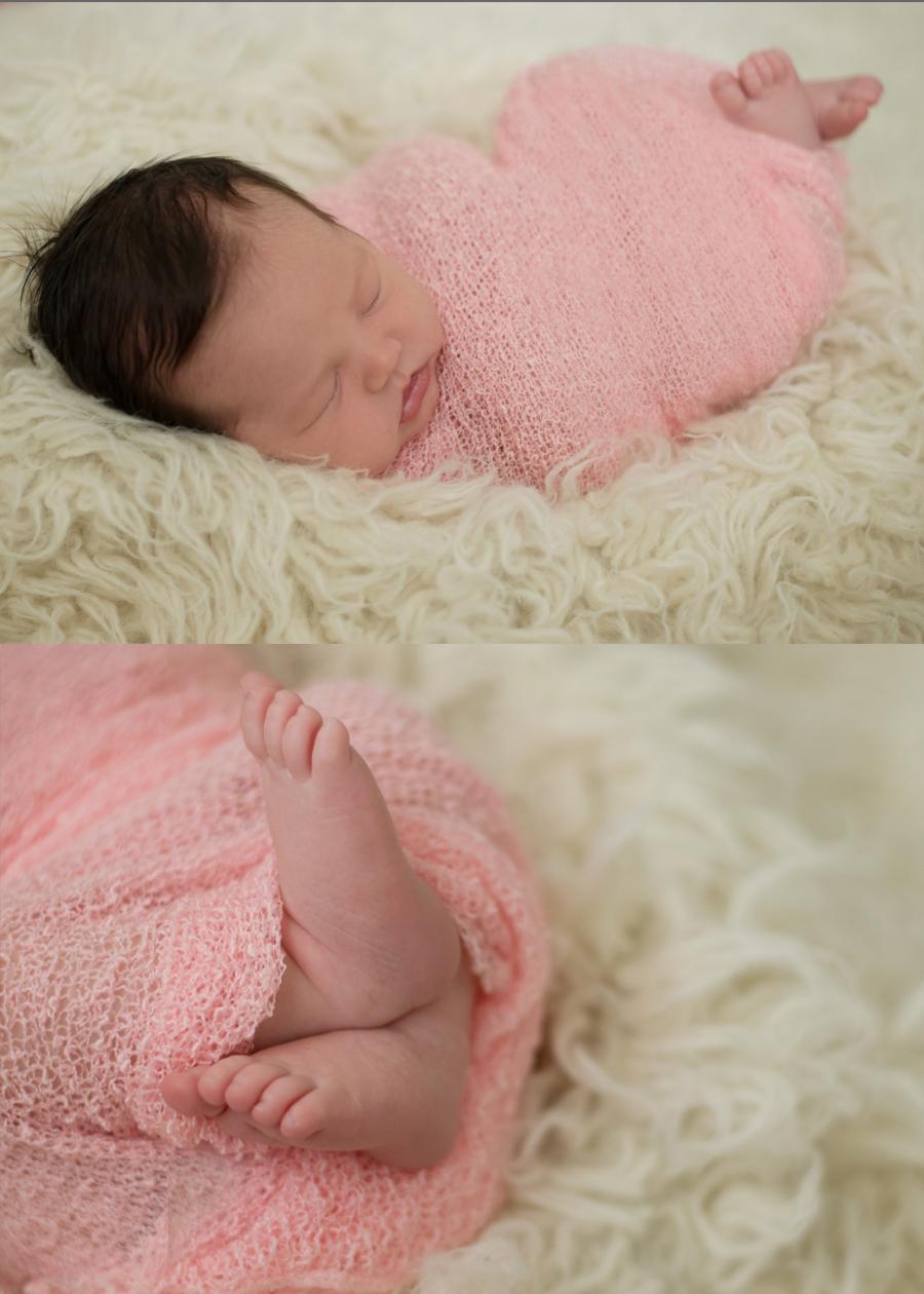 wilmington nc newborn portraits