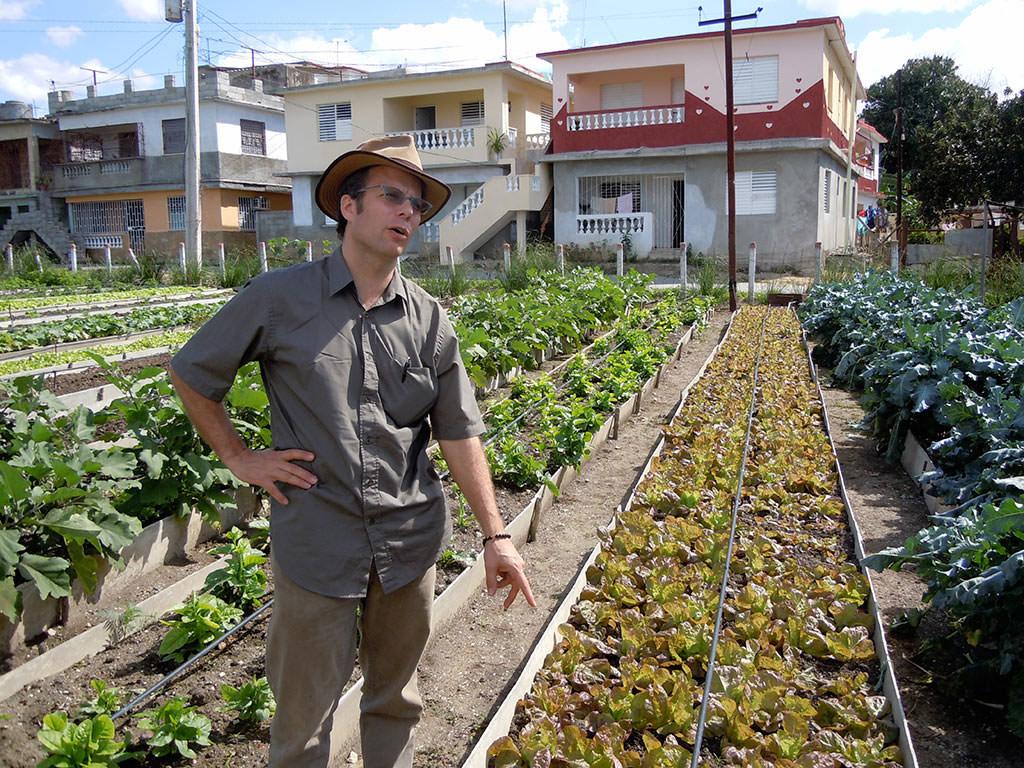 One of thousands of Cuban organic urban farms.