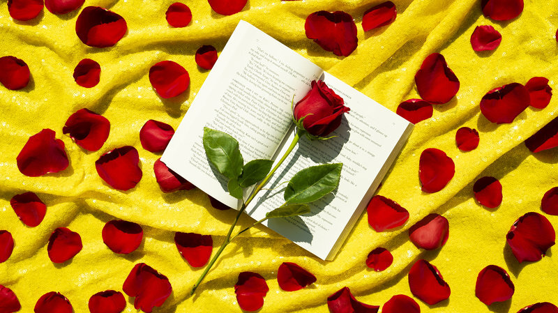 Bed Of Rosés: 24 Steamy Songs For That Summer Romance-Novel Tryst