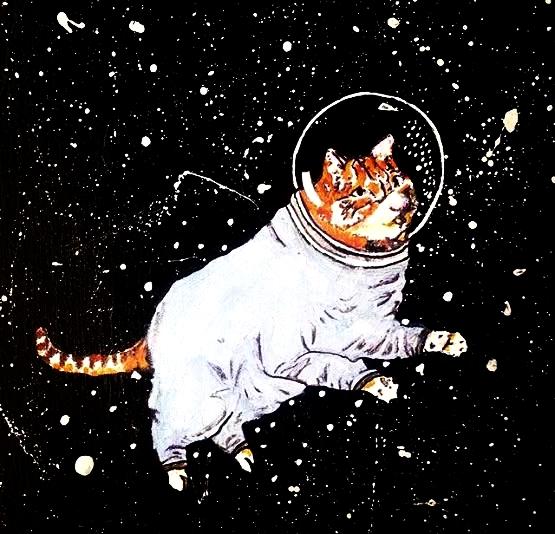 Astrocat, 2016