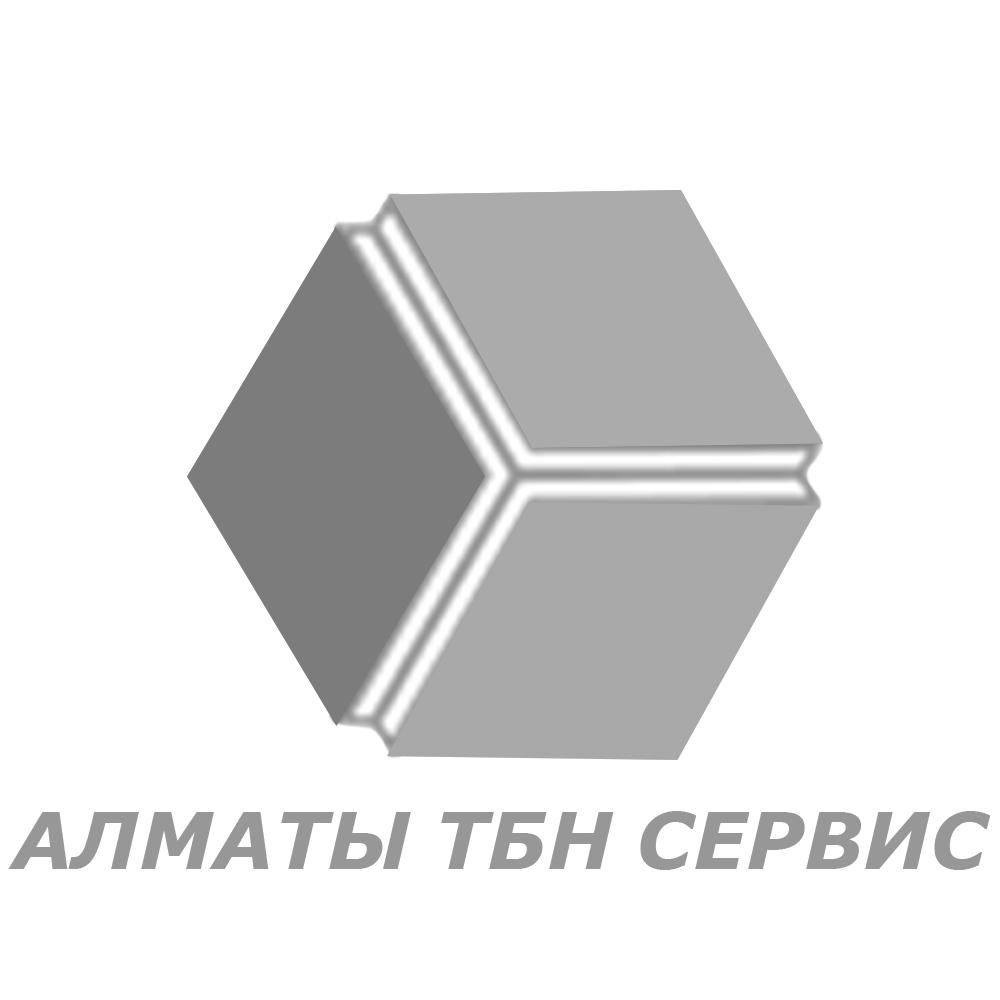 tbn-logo-white.png