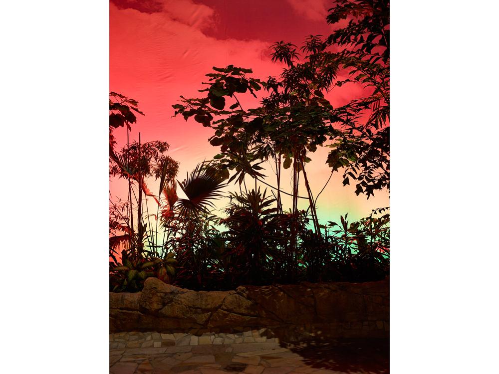 Tropic_Island_2015__©_Gataric-Fotografie__114.jpg