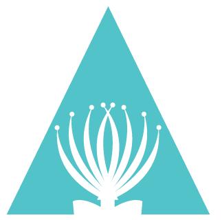 Aotearoa Youth Leadership Institute