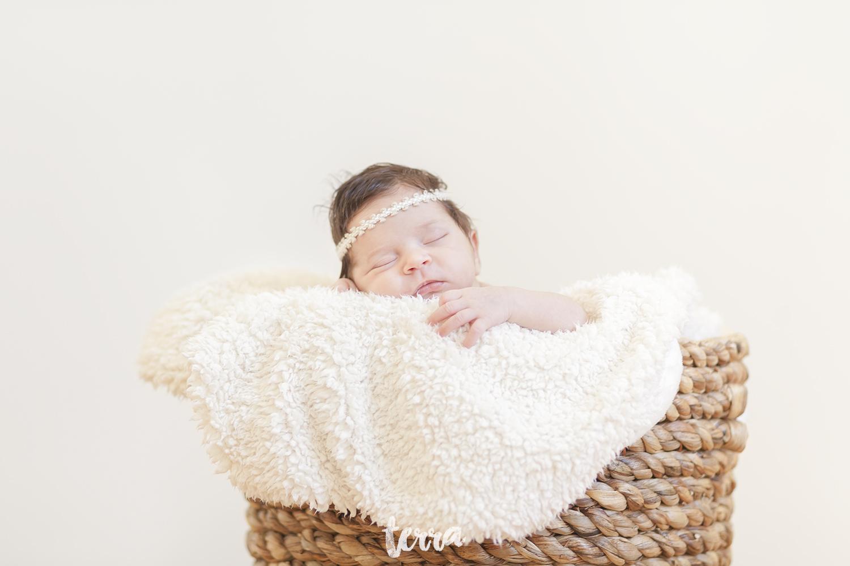 sessao-fotografica-recem-nascido-bebe-terra-fotografia-011.jpg