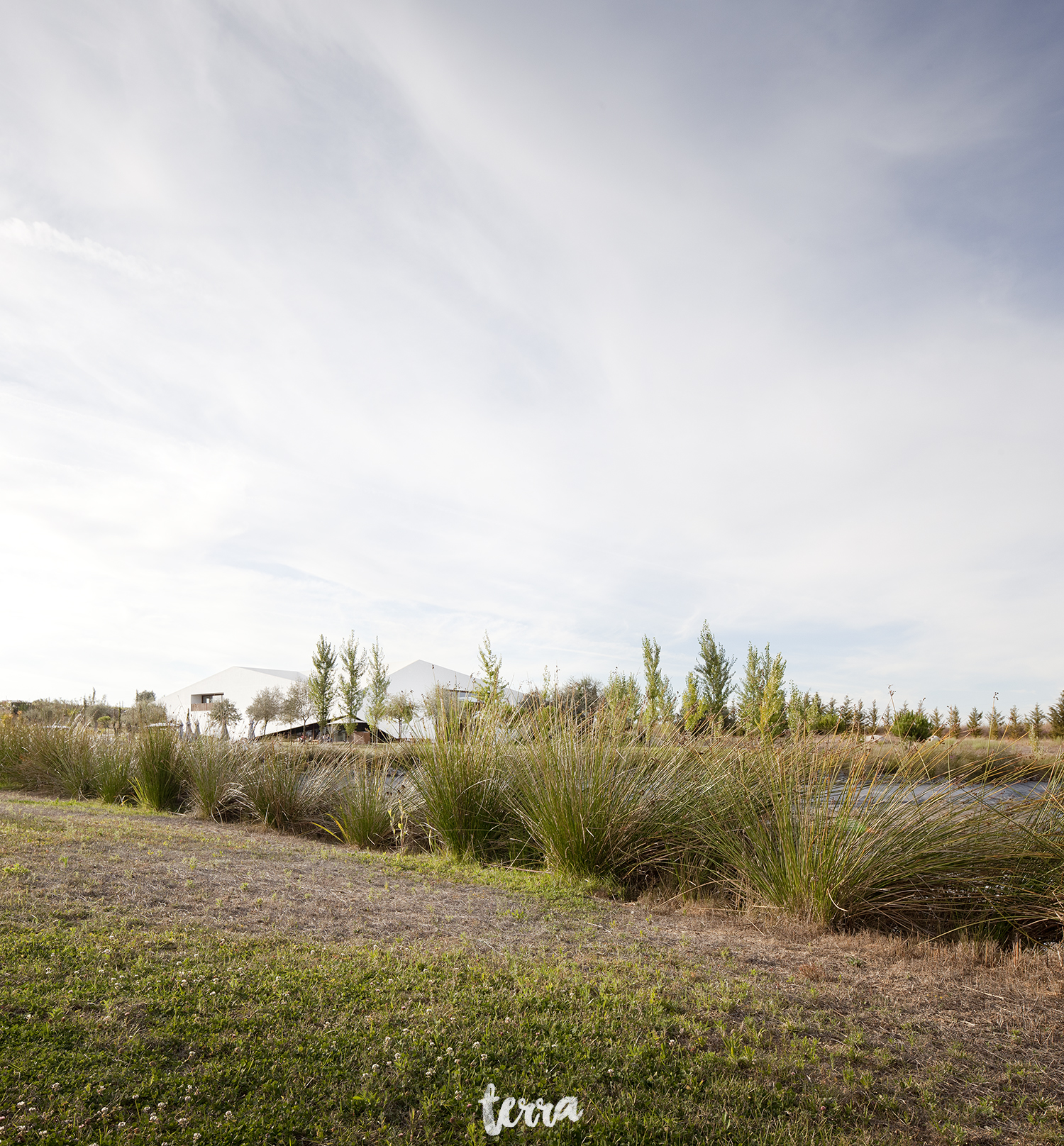 sessao-fotografica-trash-the-dress-land-vineyards-alentejo-terra-fotografia-0001.jpg