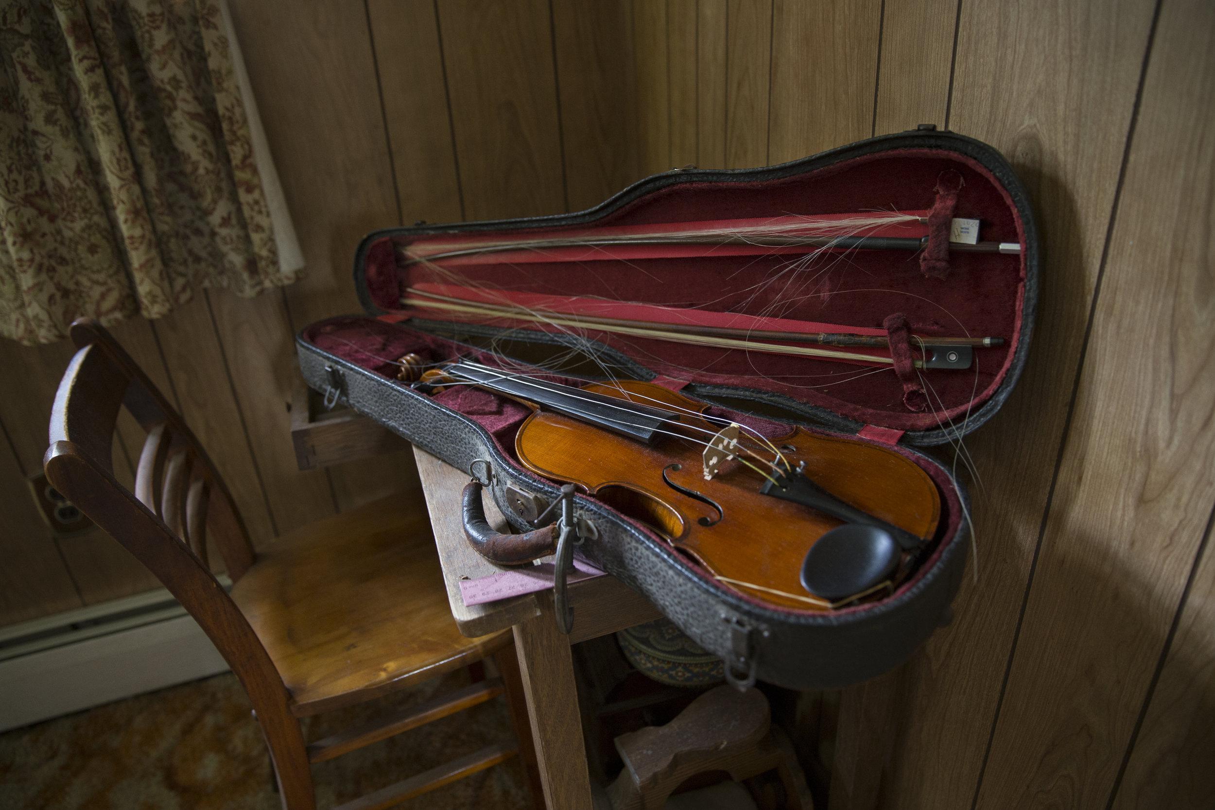 Stradivarius, 2015