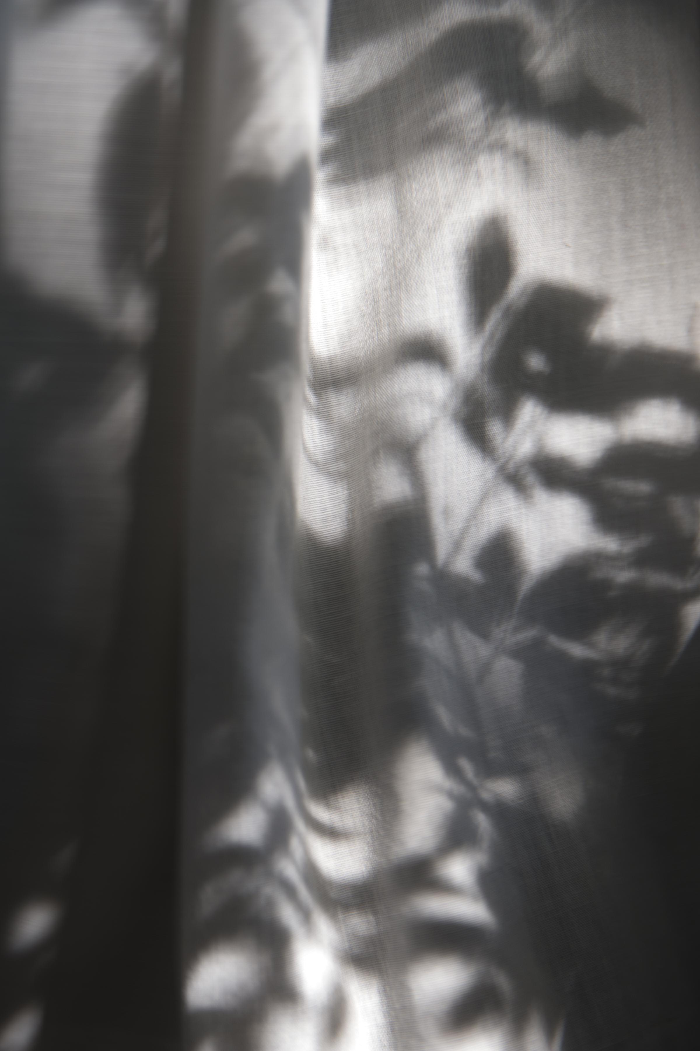 The Curtain, 2017