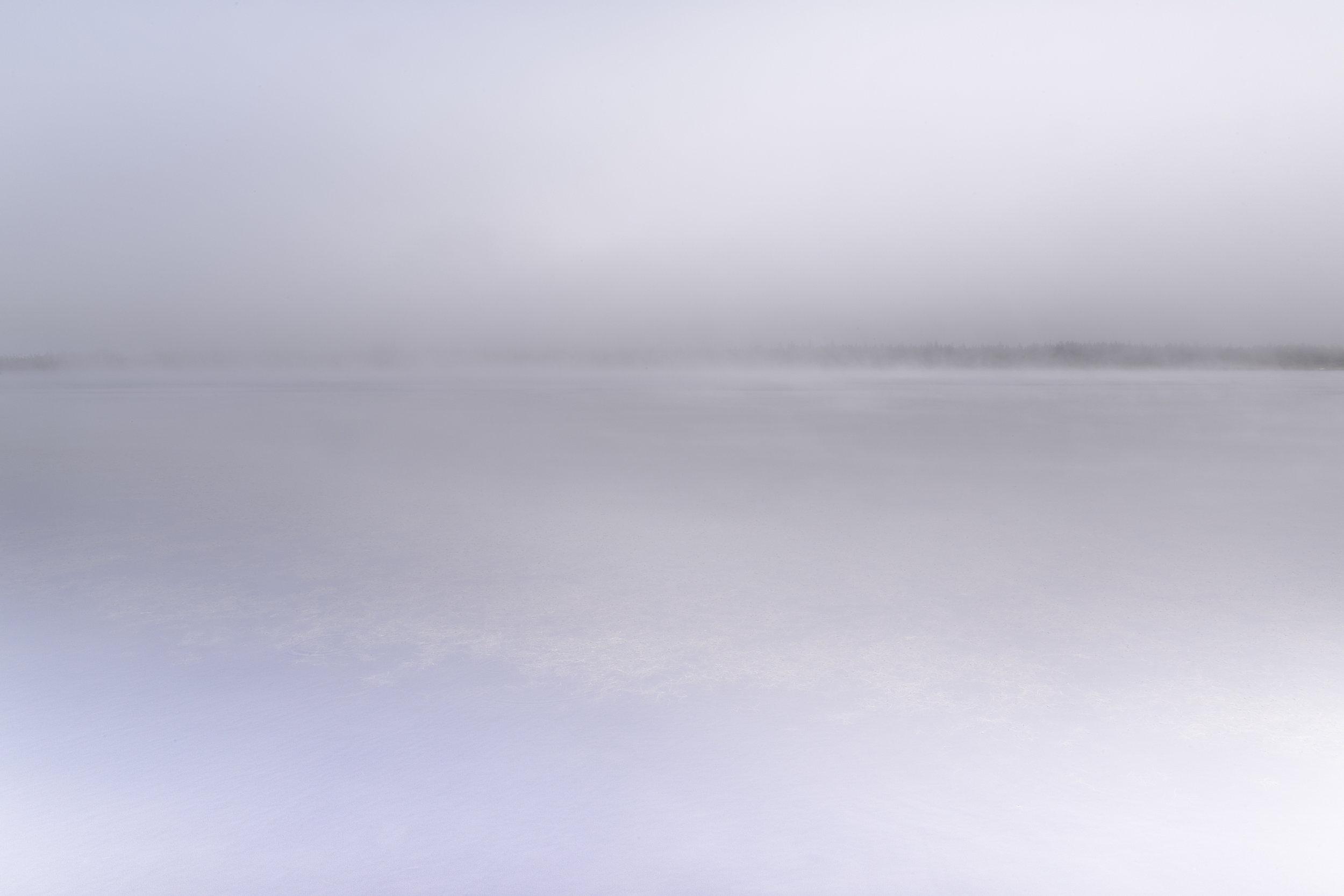 Long Pond, 2014
