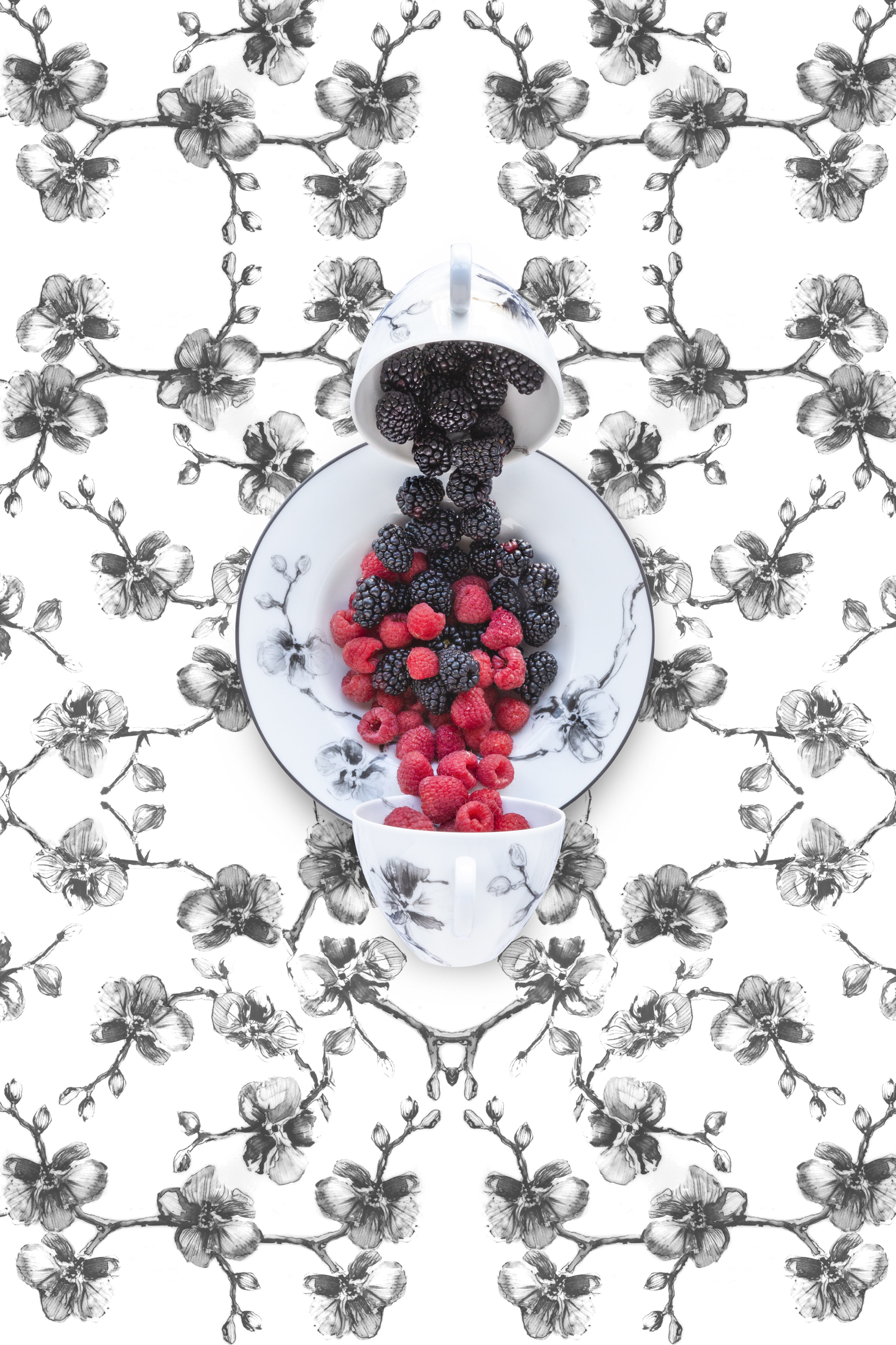 Aram Black Orchid with Berries, 2019