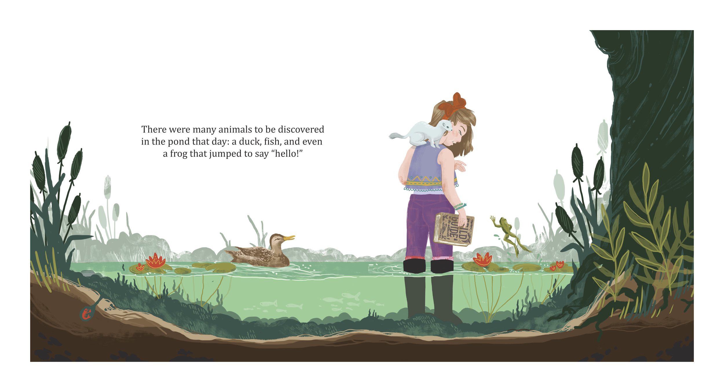 AT THE POND   A children's science book