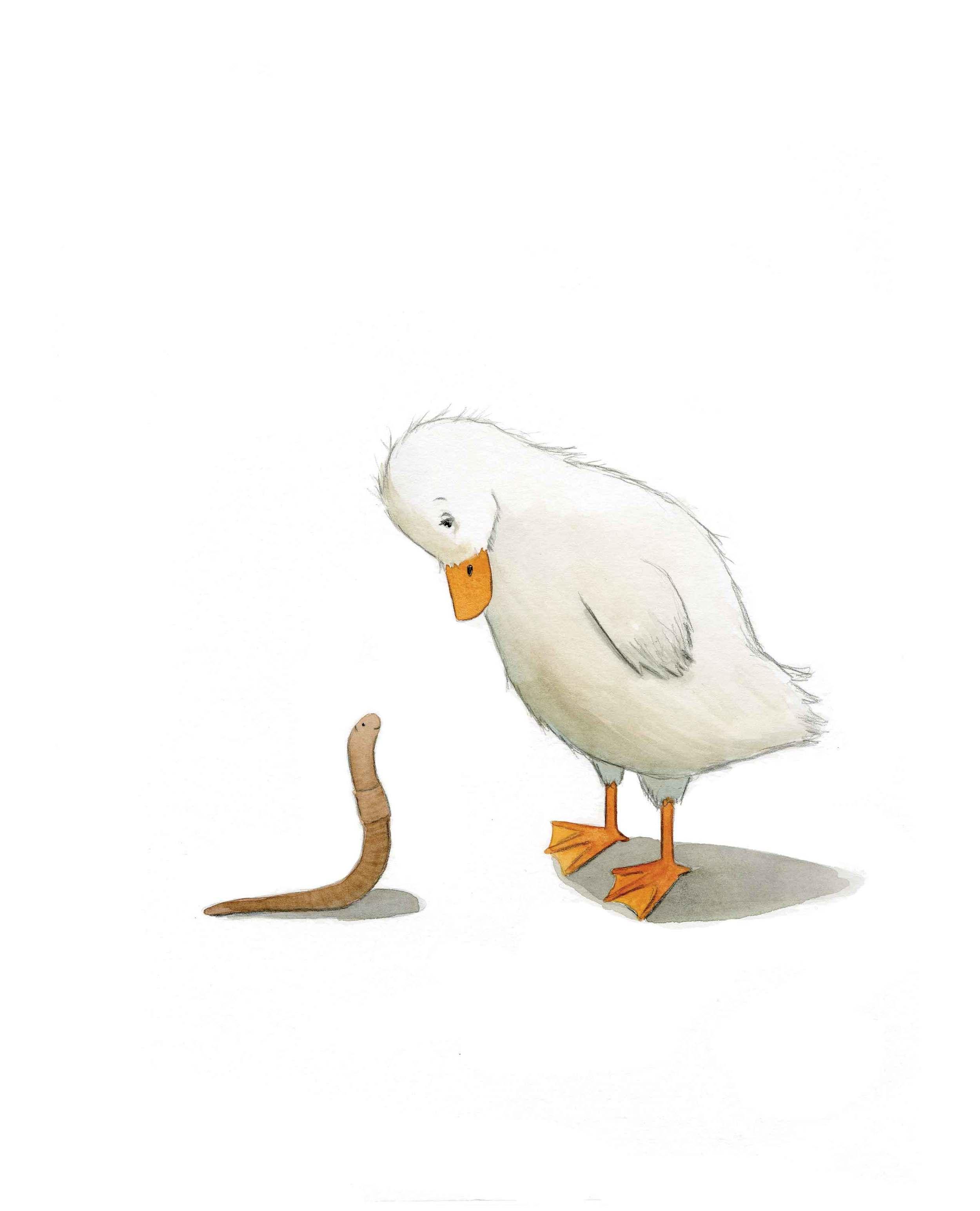 duckandworm.jpg
