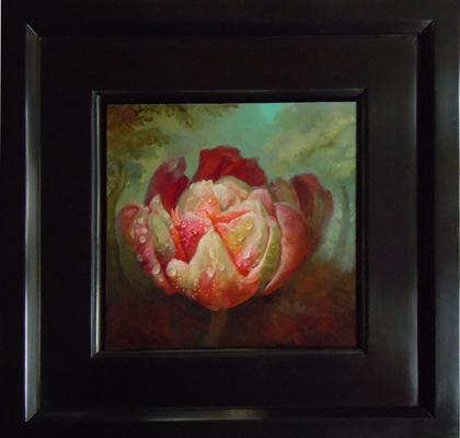 Saint Rose as a Peony Tulip