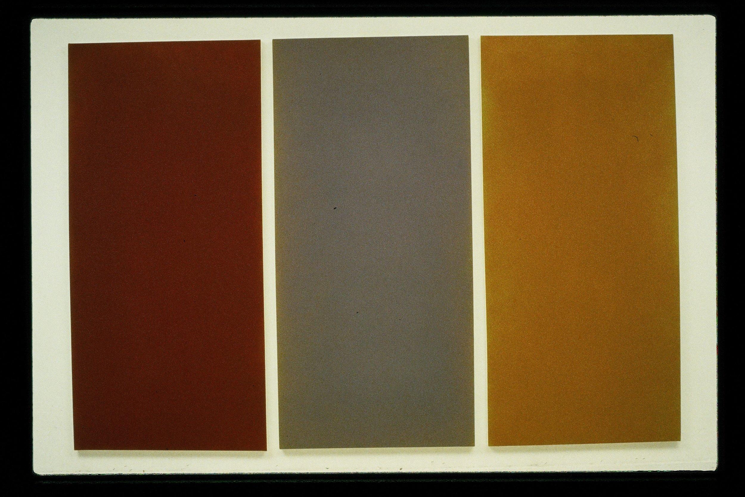 Copy of willow, 1997,m 72x106.JPG