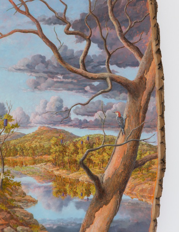 Idealized Views of Nature on Logs