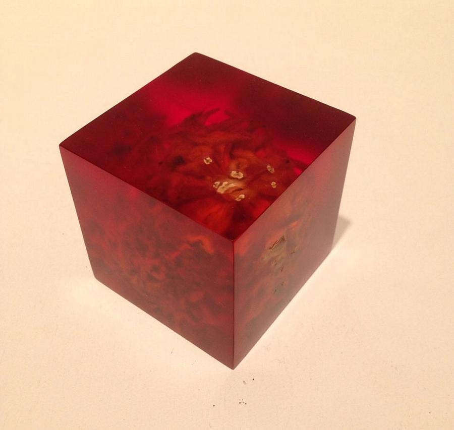 Memory block 417 (red)
