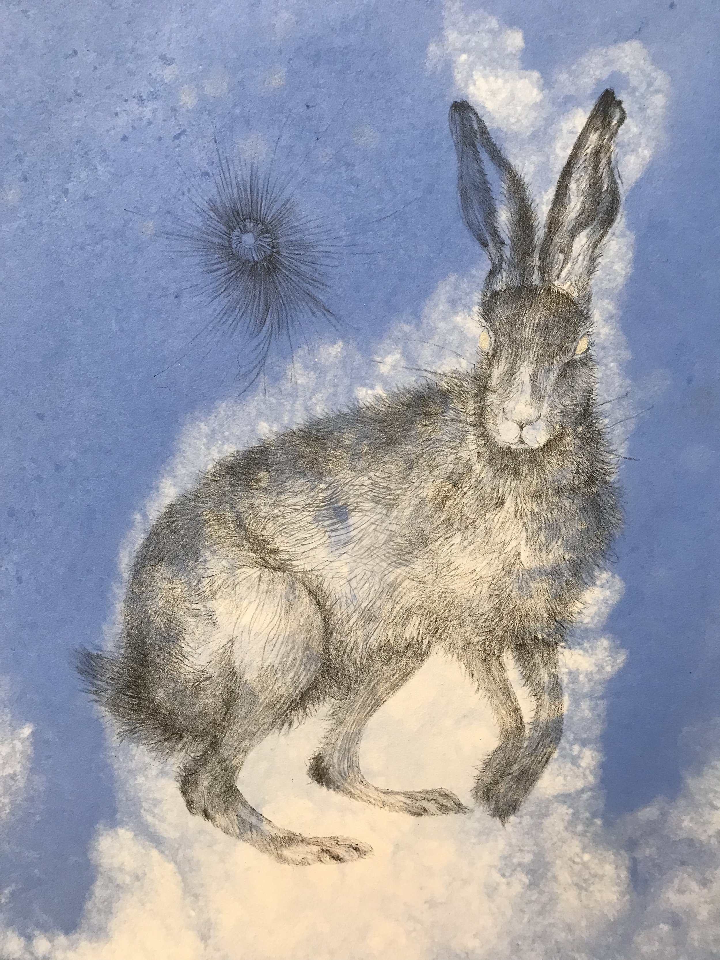Hare, 2015, AP unique various, lithograph on pigmented handmade cotton paper, with pigment with silver pochoir, 13 58 x12.jpg