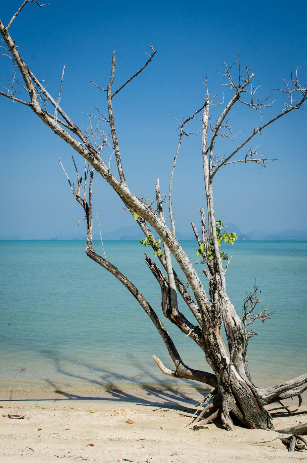 KohYaoNoi-Thailand-AmyRolloPhoto-2-55.jpg