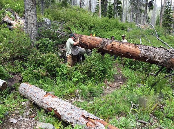 wilderness-trails-clearing-5.jpg