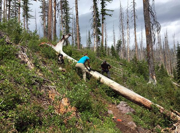 wilderness-trails-clearing-3.jpg