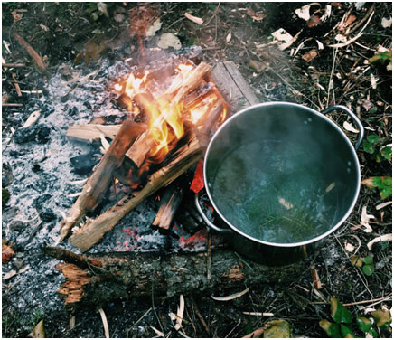Tea from cedar leaves, douglas fir and subalpine fir needles.Delicious!