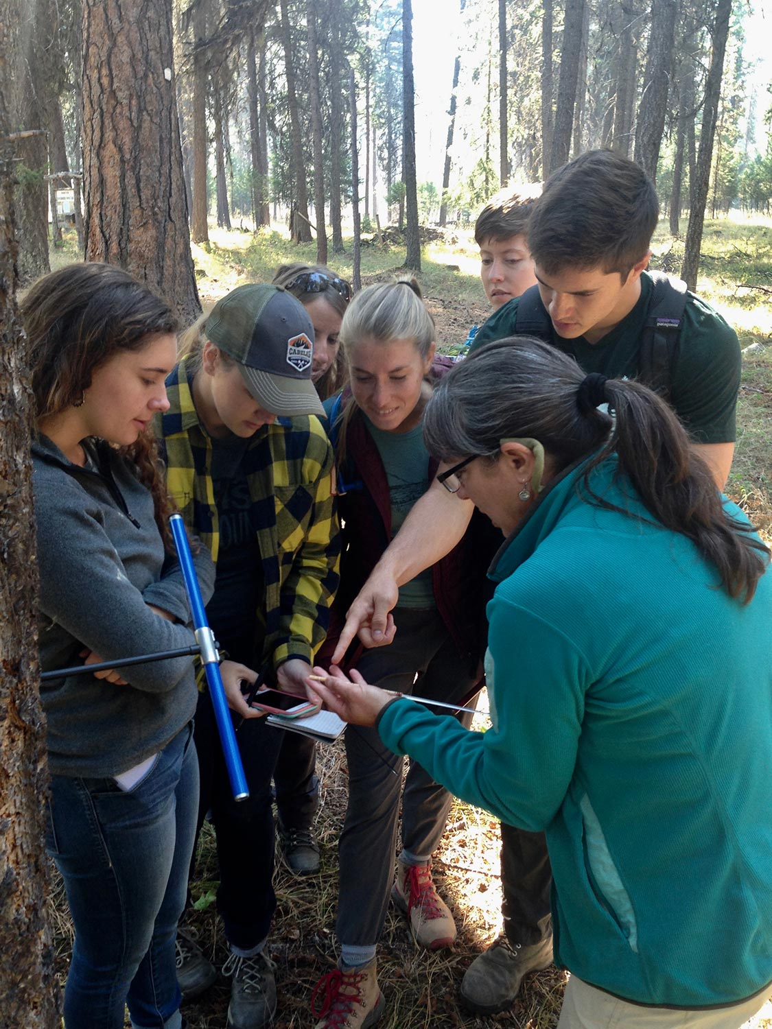 learning-forest-and-fire-ecology-with-maria-mantas.jpg