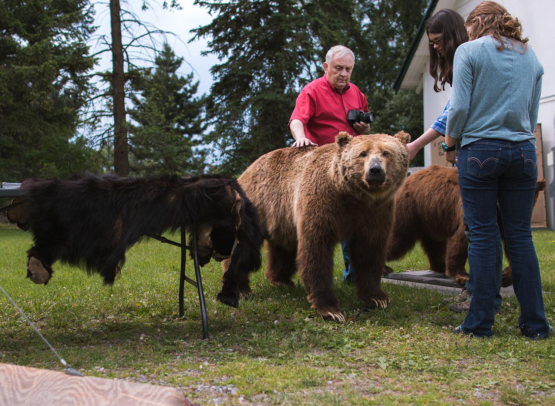 bear-fair-1.jpg