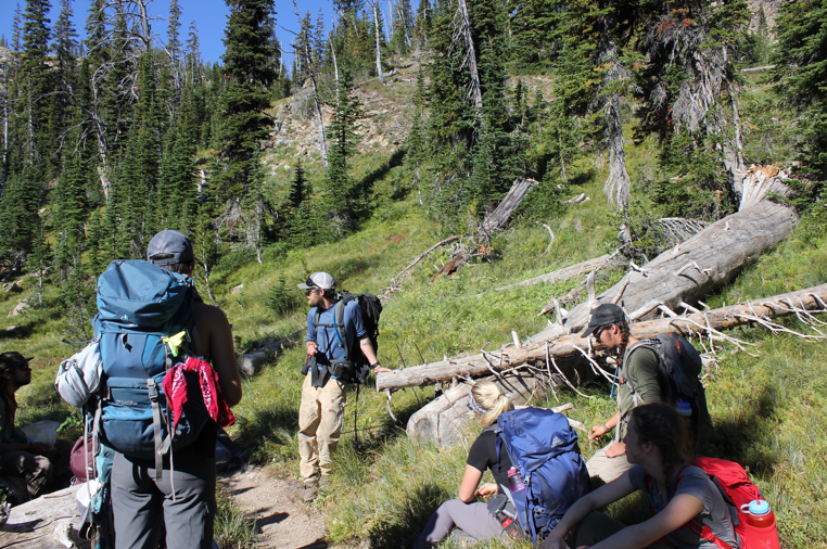 Learning about whitebark pine and blister rust on the trail up to Sapphire Lake.     Photo by Meredith Fraser.