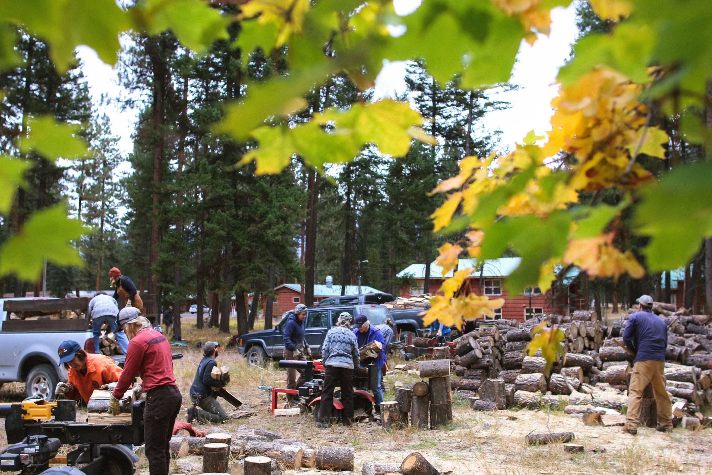 L&L students, SVC staff and community members coming together to chop, split & haul firewood. Photo by Andrea DiNino