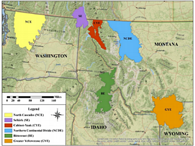 The six recovery zones designated by the Interagency Grizzly Bear Committee in 2004.    Credit: US Fish and Wildlife Service