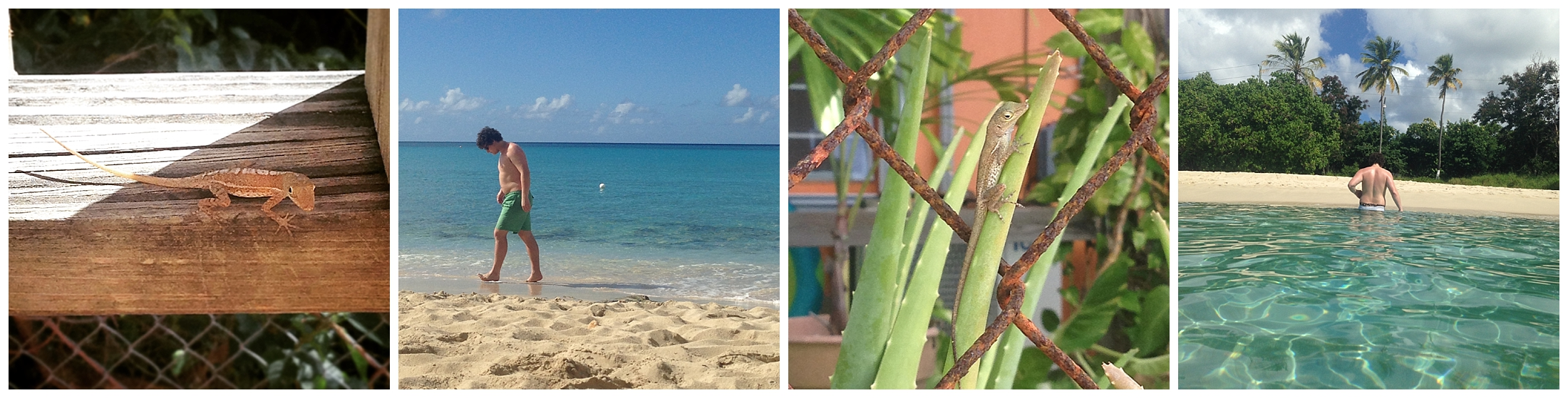 St-Croix-Trip-Itinerary-SSPTravels10.jpg
