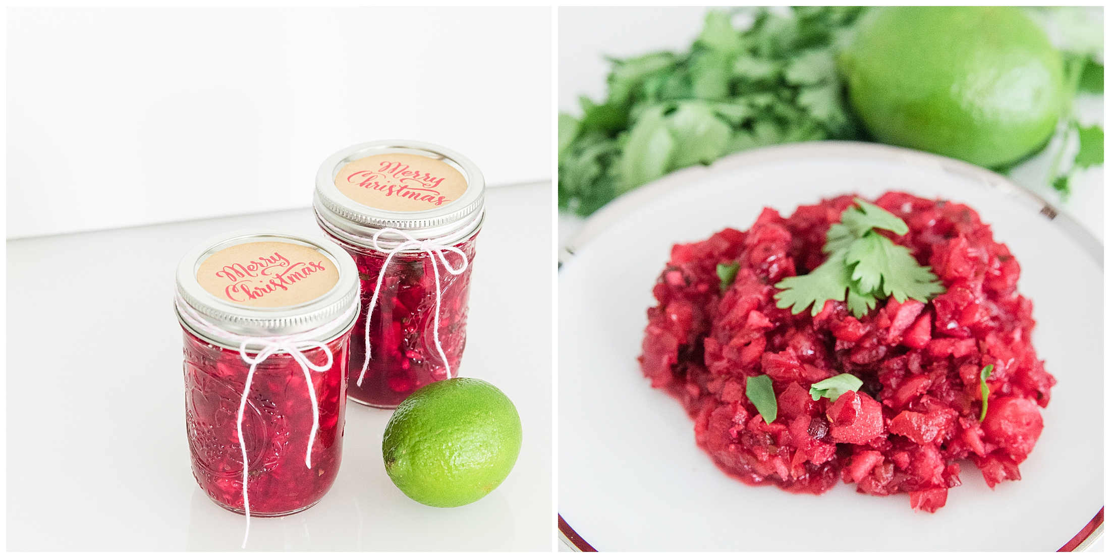 cranberry-salsa-recipe_0003.jpg