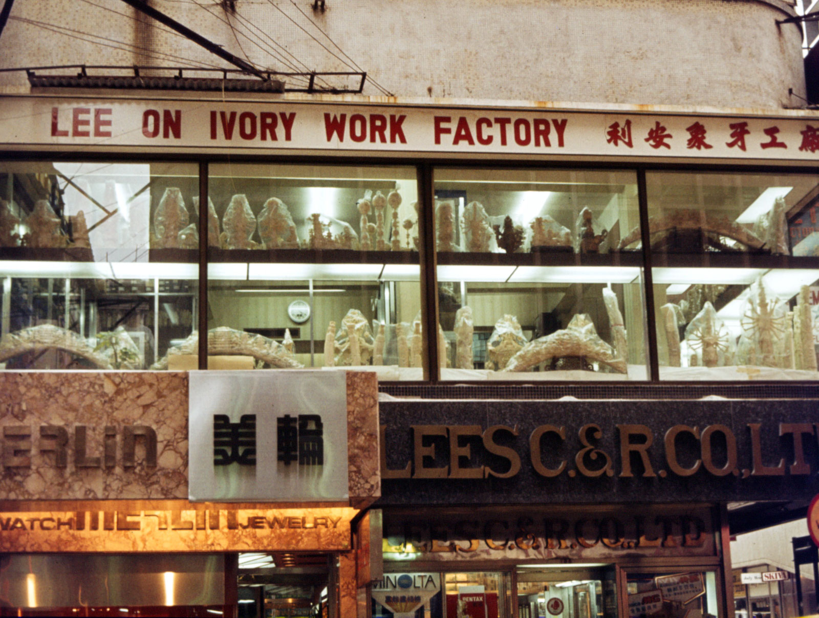Ivory Workshop, Kowloon 1985
