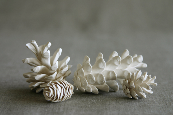 pinecones-1.jpg