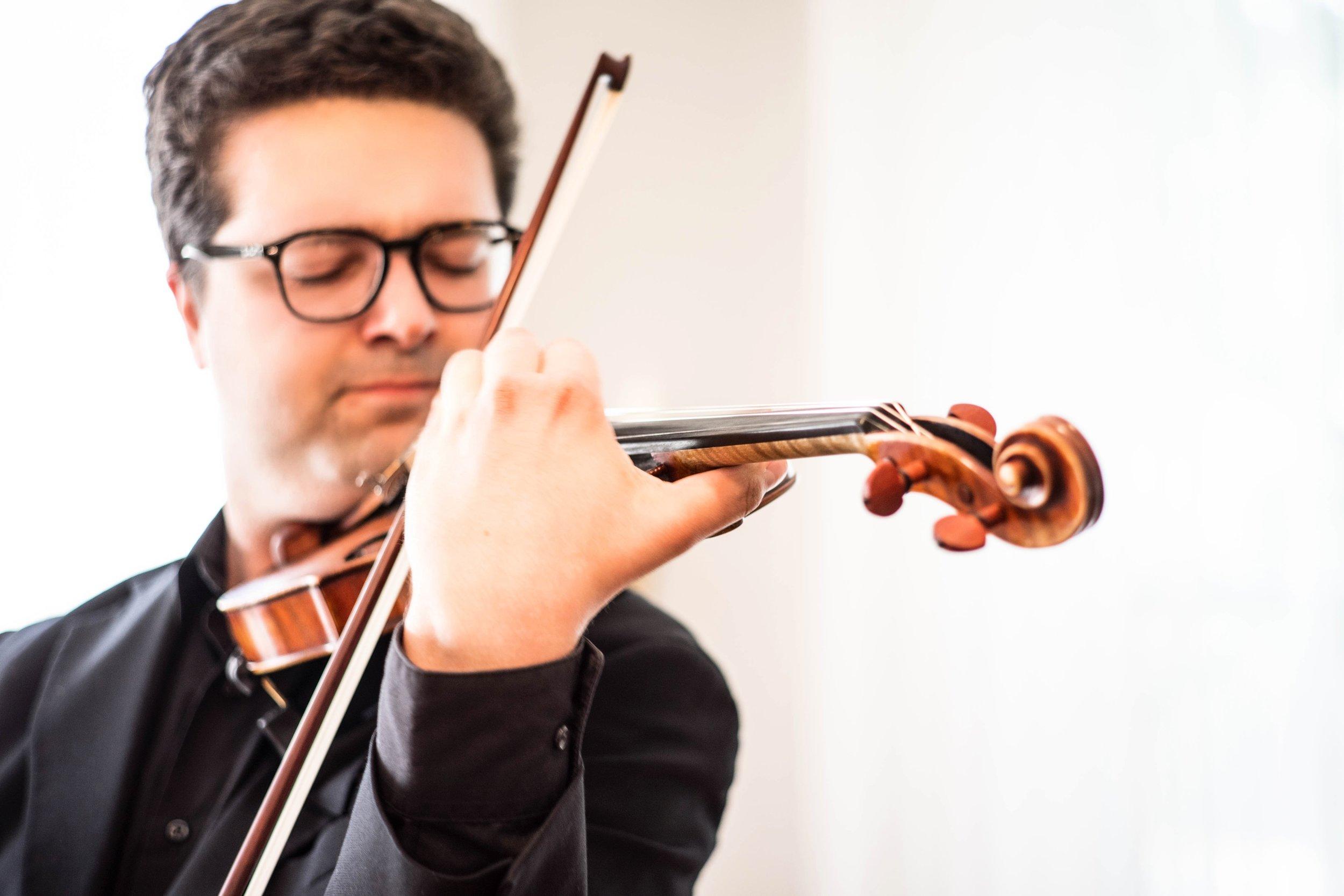 violin-11_pp.jpg