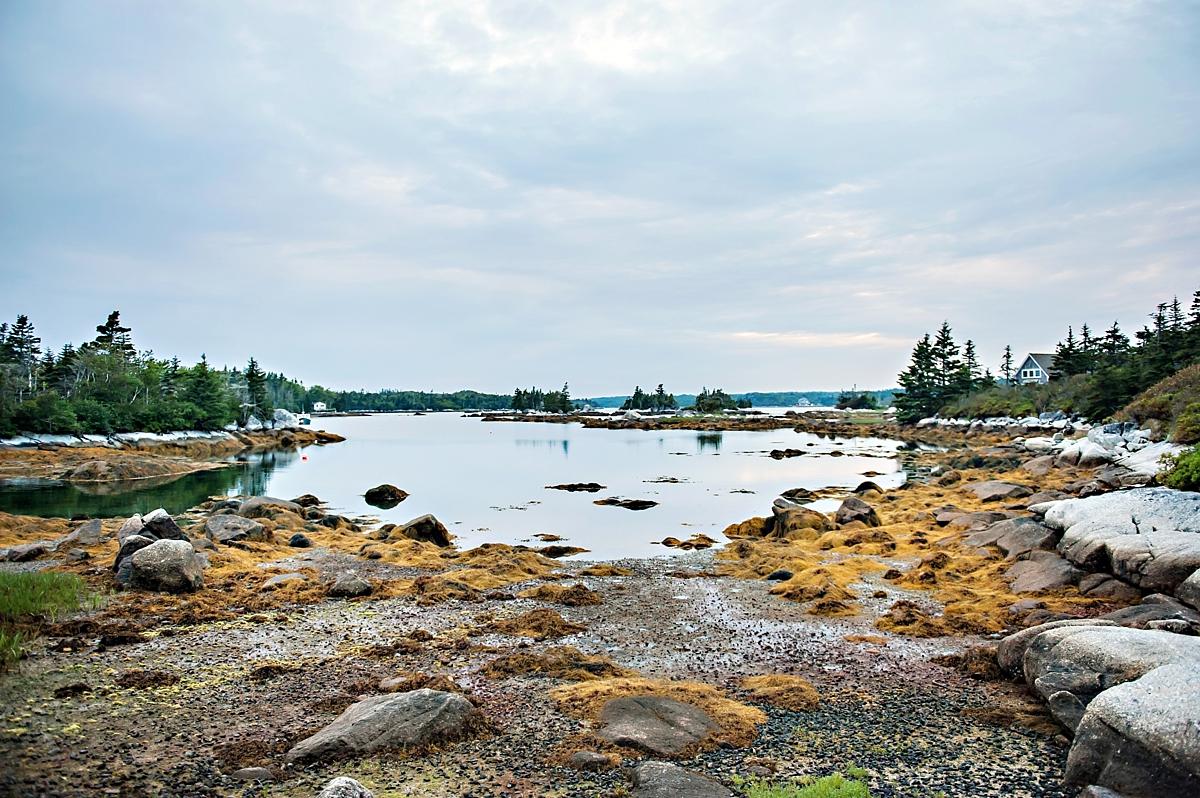 Nova-Scotia-Coastal-Class-Engagement-Shoot-Candace-Berry-Photography66.jpg