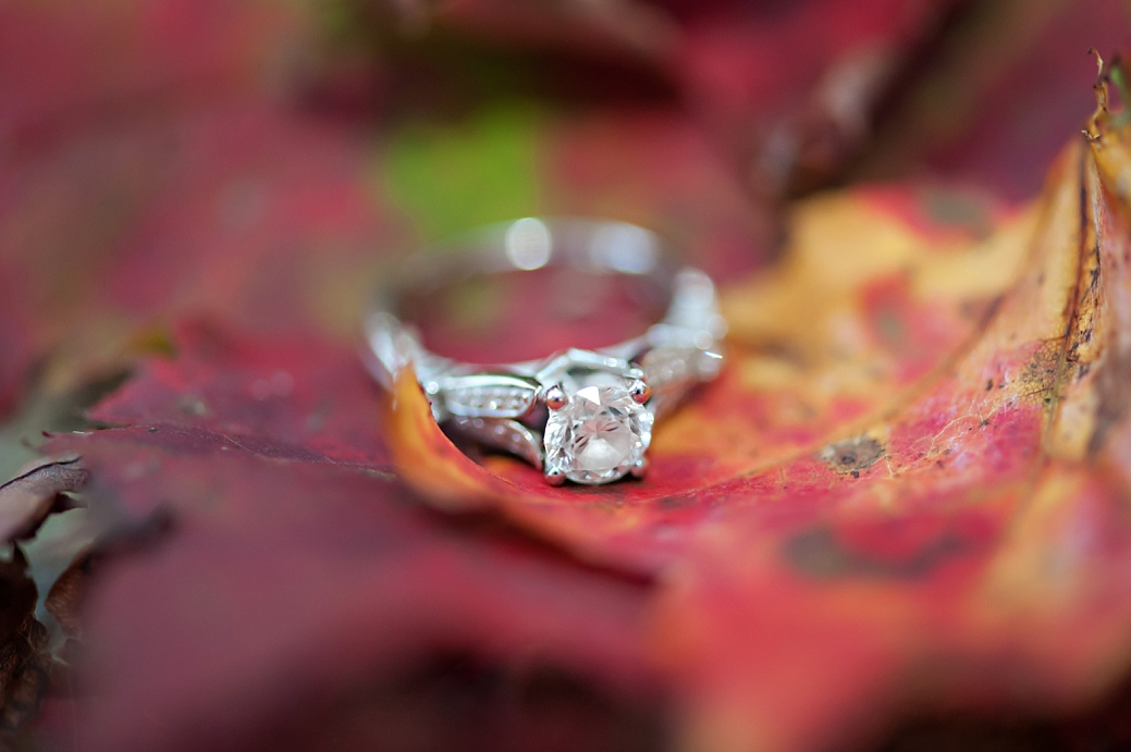Fall-Engagement-Photography-Woodsie-Engagement-Session-Halifax-Wedding-Photography-Candace-Berry-Photography_29.jpg