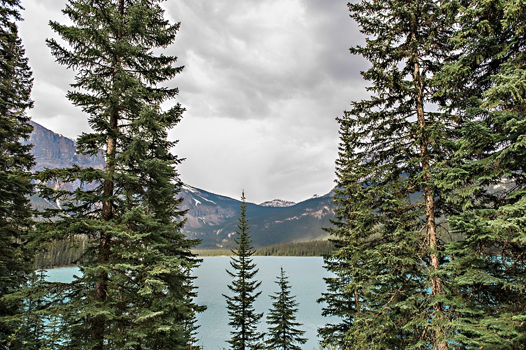 Rocky-Montain-Engagement-Shoot-Canmore-Alberta_75.jpg