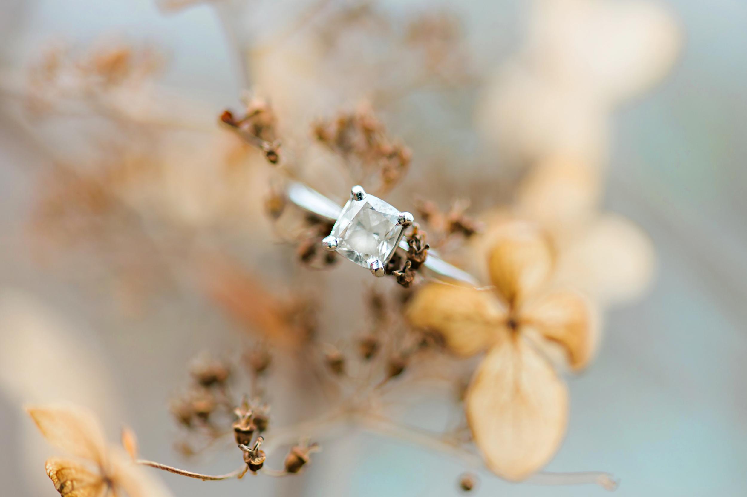 Engagements_2016_Website057.jpg