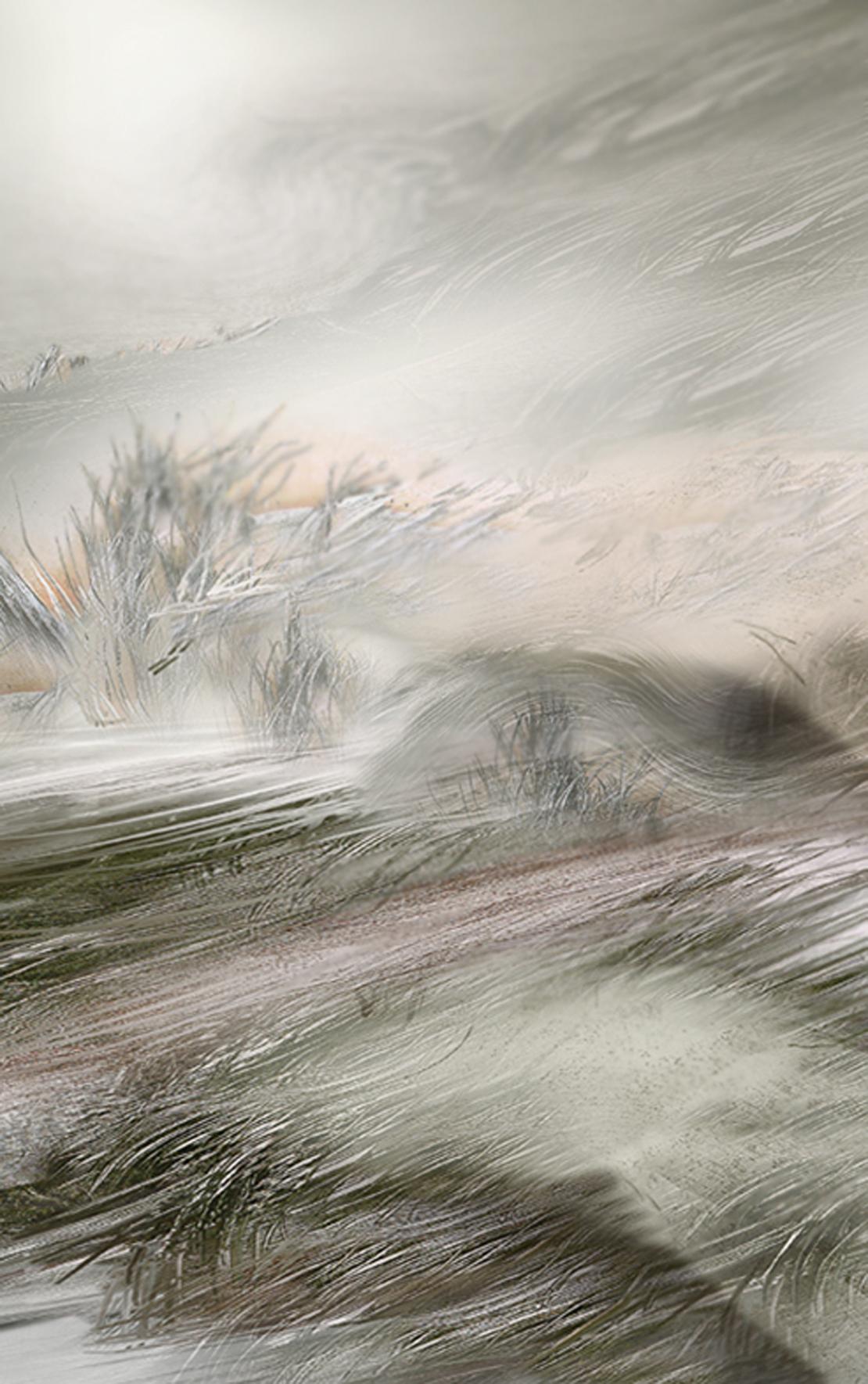 Oceany traw 1, Kołysane wiatrem, 100x70, 2000.jpg