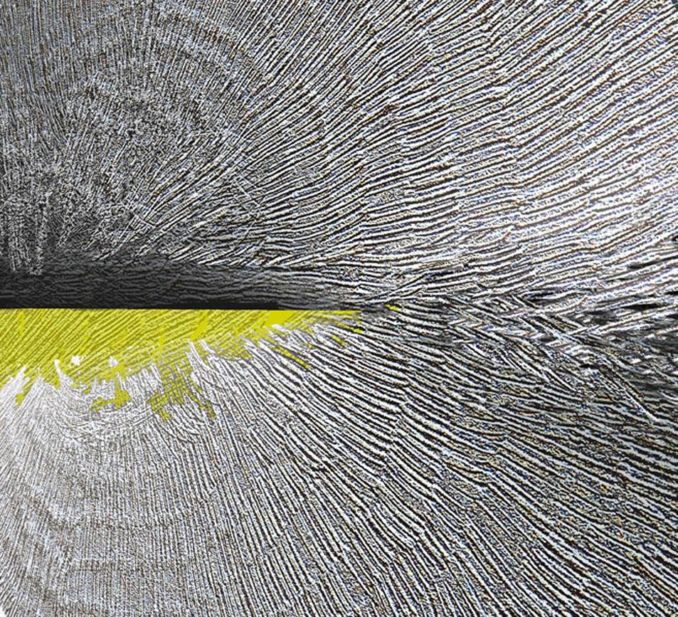 Zwierzeta wodne 7, 16x19 cm.jpg
