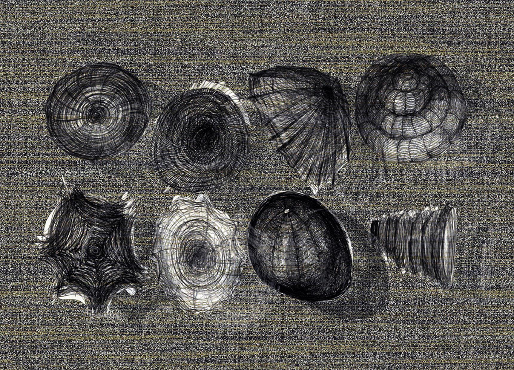 Zwierzeta wodne 13, 29x19 cm.jpg