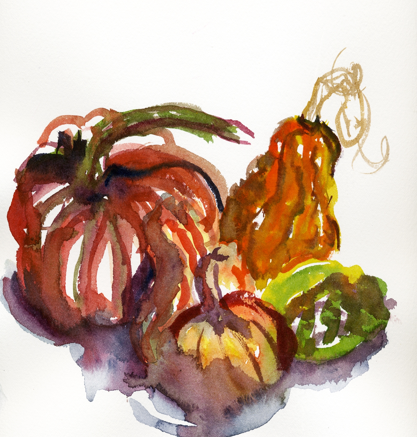 GOURDS SQUARED