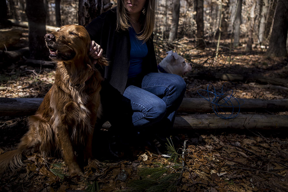 Portrait of Connecticut mom with her golden retriever dog and bull dog in the forest on a hike in westbrook ct