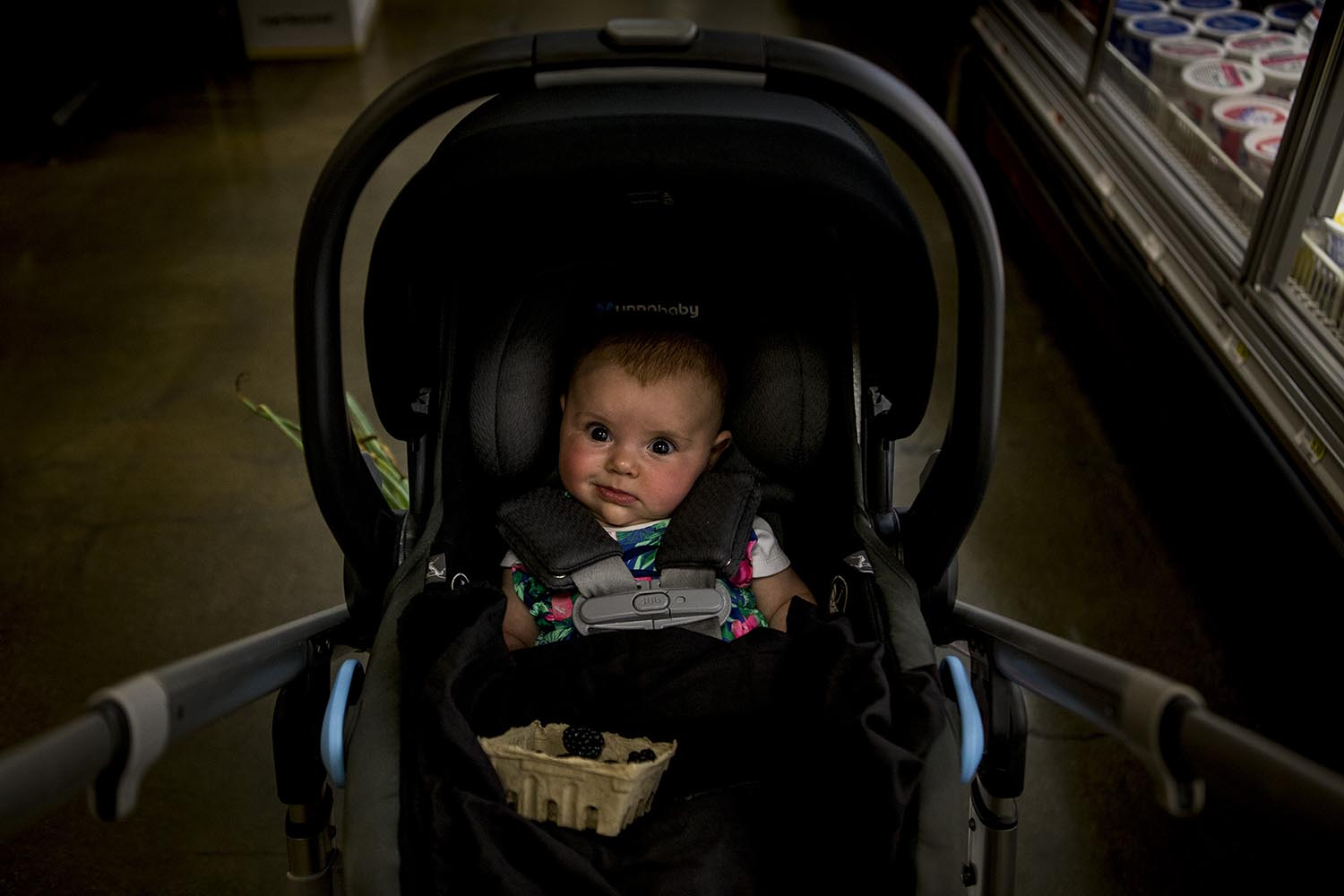 unique boston baby portrait of a child in a stroller in the supermarket
