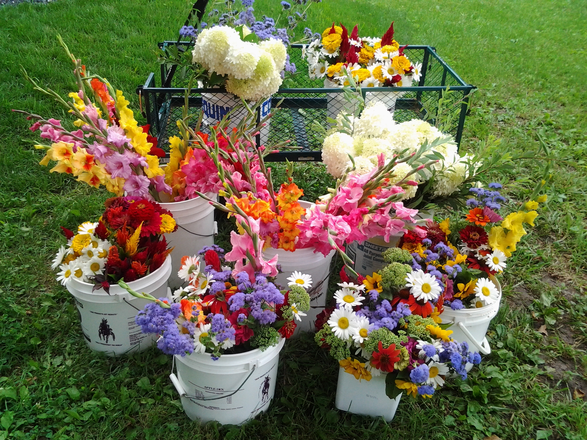 Hidden Ridge Flower Farm.jpg