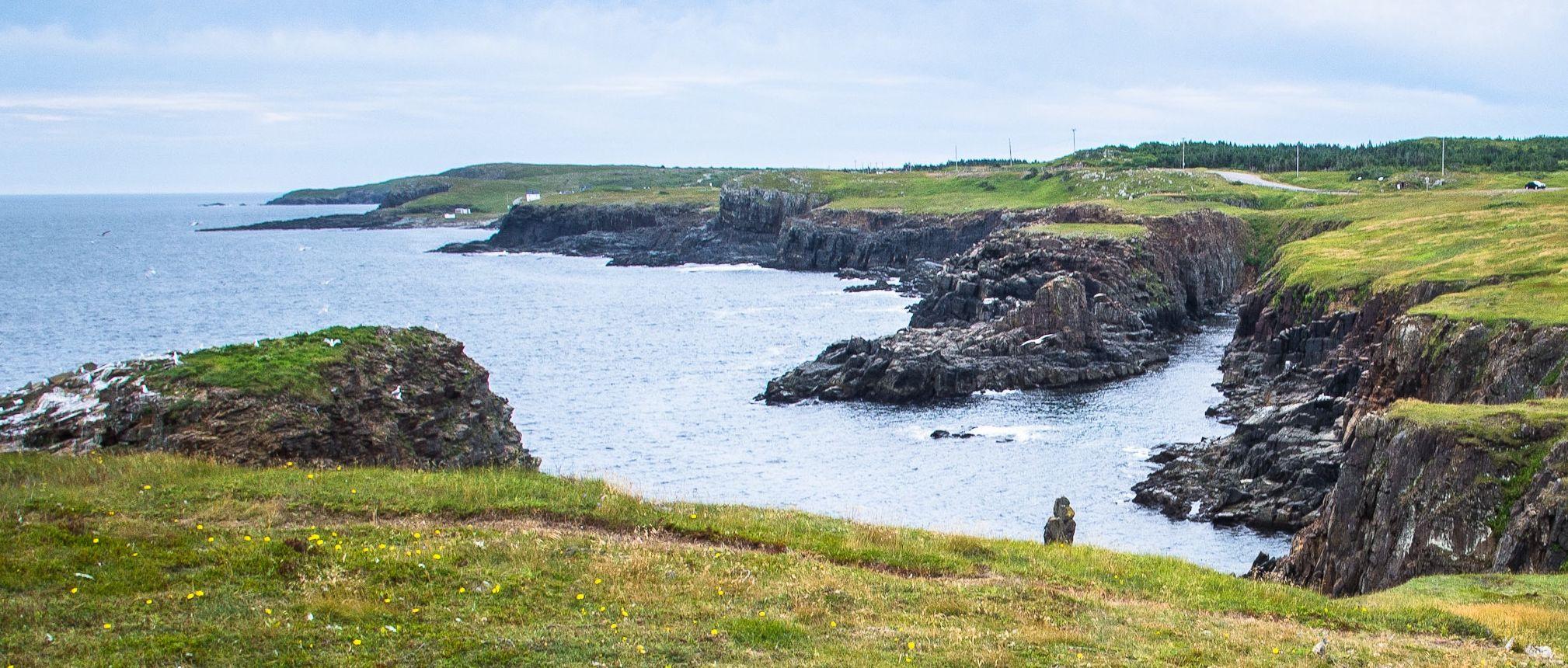 Newfoundland coastline